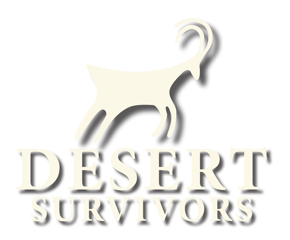 Banner DS logo