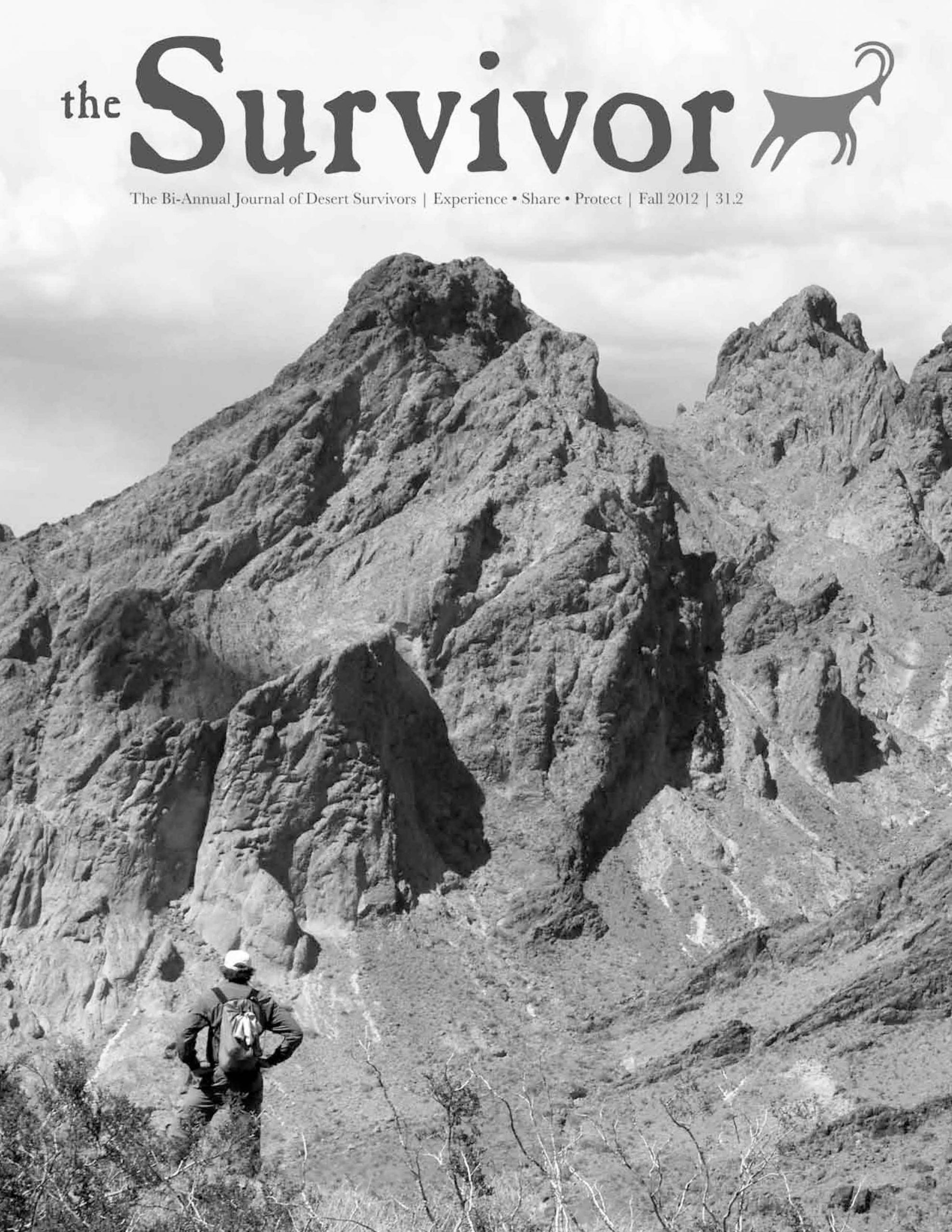 Survivor Fall 12 Cover