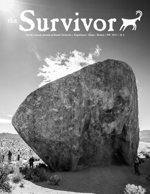 The Survivor Fall 2013 Cover