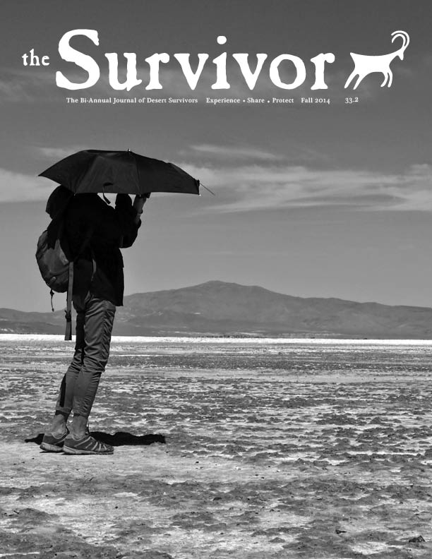 The Survivor Fall 2014 Cover