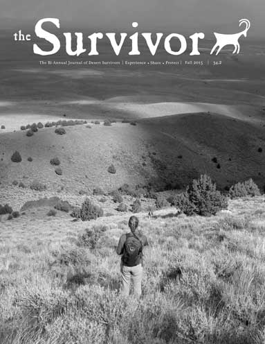 The-Survivor-Fall-2015-Cover