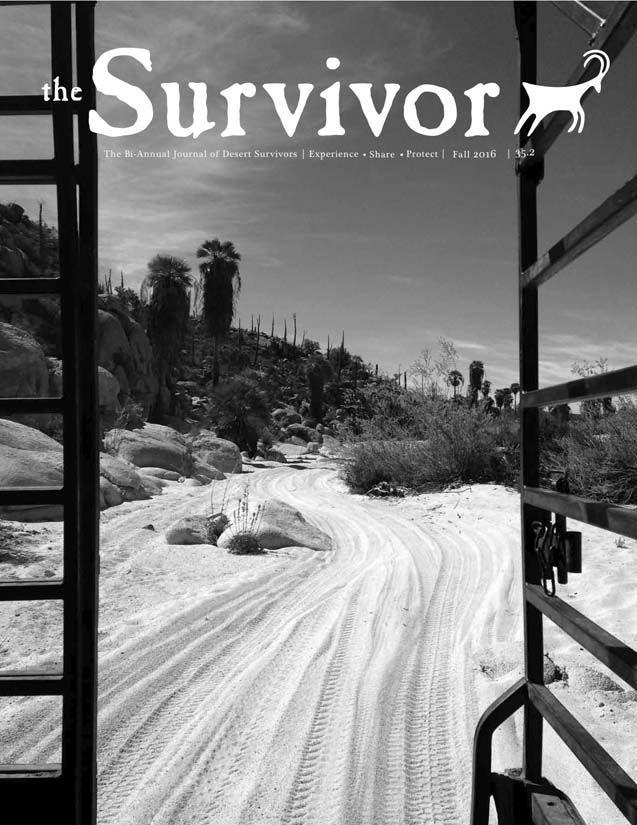 The Survivor Fall 2016 cover