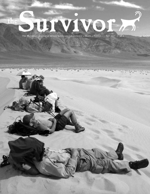 The-Survivor-Fall-2017-cover