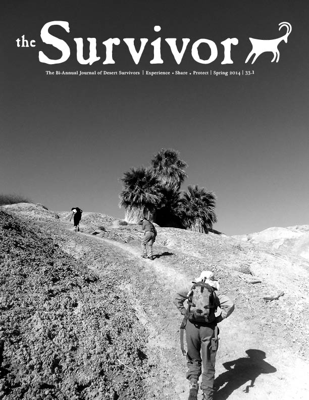 The Survivor Spring 2014 Cover
