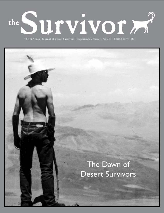 The Survivor Spring 2017 cover